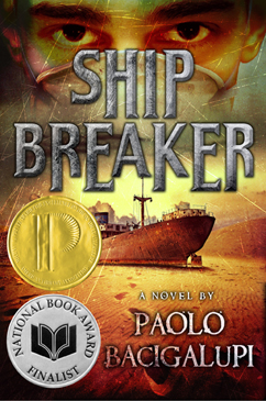 Cover for Ship Breaker
