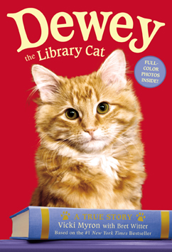 Cover for Dewey the Library Cat: A True Story