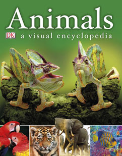 Cover for Animals: A Visual Encyclopedia
