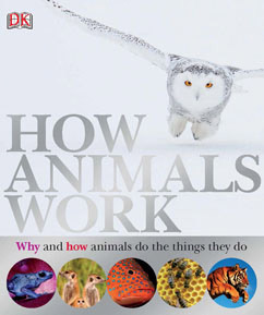 Cover for How Animals Work
