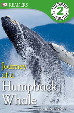 Cover for Journey of a Humpback Whale
