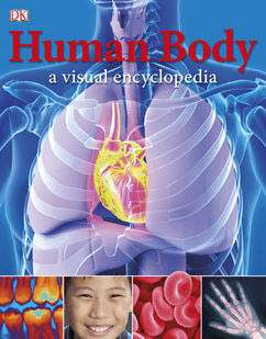 Cover for Human Body: A Visual Encyclopedia