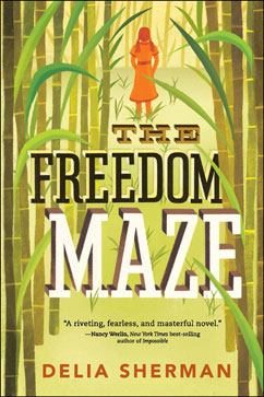 Cover for The Freedom Maze