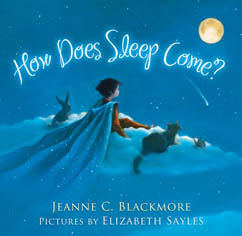 Cover for How Does Sleep Come?