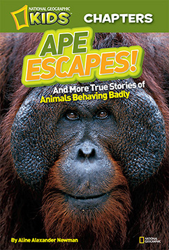 Cover for National Geographic Kids Chapters: Ape Escapes