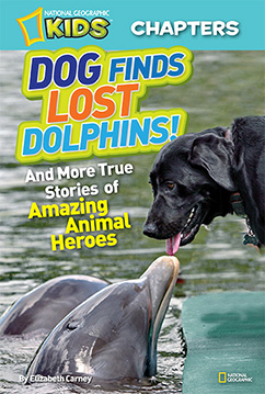 Cover for National Geographic Kids Chapters: Dog Finds Lost Dolphins