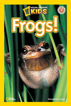 Cover for Frogs