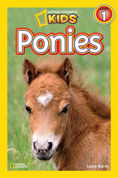 Cover for Ponies