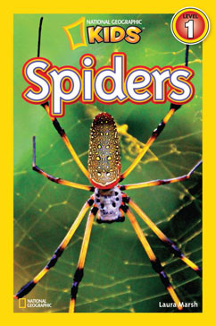 Cover for Spiders