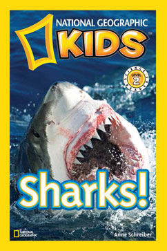 Cover for Sharks