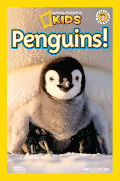 Cover for Penguins!