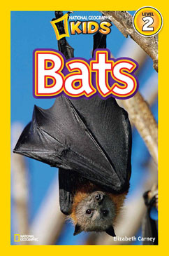 Cover for Bats