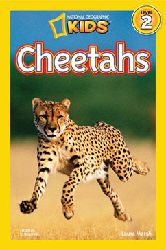 Cover for Cheetahs