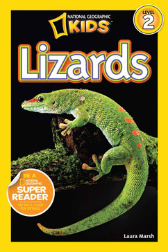 Cover for Lizards