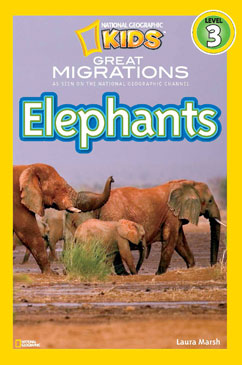 Cover for Elephants