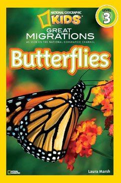 Cover for Butterflies