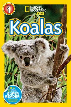 Cover for Koalas