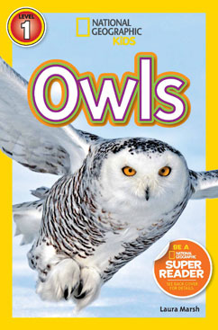 Cover for Owls