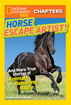 Cover for National Geographic Kids Chapters: Horse Escape Artist