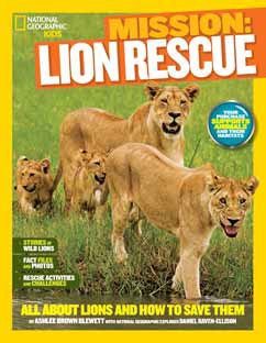 Cover for Lion Rescue