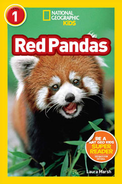 Cover for Red Pandas