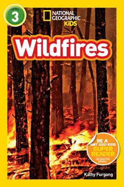 Cover for Wildfires