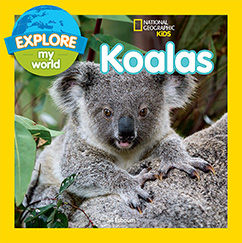 Cover for Explore My World Koalas