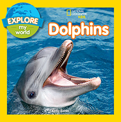 Cover for Explore My World Dolphins