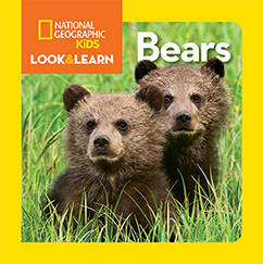 Cover for National Geographic Kids Look and Learn: Bears