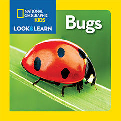 Cover for National Geographic Kids Look and Learn: Bugs