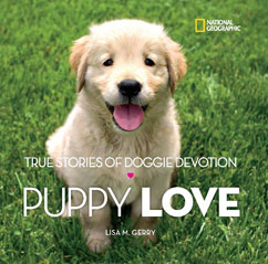 Cover for Puppy Love