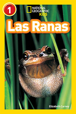 Cover for National Geographic Readers: Las Ranas (Frogs)