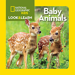 Cover for National Geographic Kids Look and Learn: Baby Animals