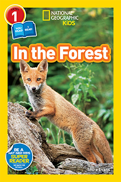 Cover for National Geographic Readers: In the Forest