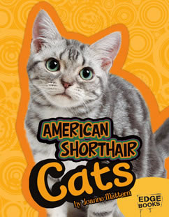 Cover for American Shorthair Cats