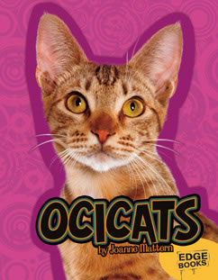 Cover for Ocicats