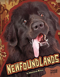 Cover for Newfoundlands
