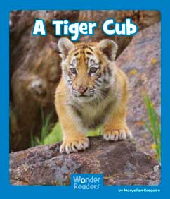 Cover for A Tiger Cub