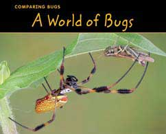 Cover for A World of Bugs