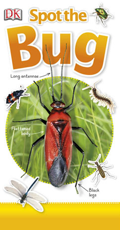 Cover for Spot the Bug