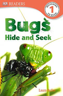Cover for Bugs Hide and Seek