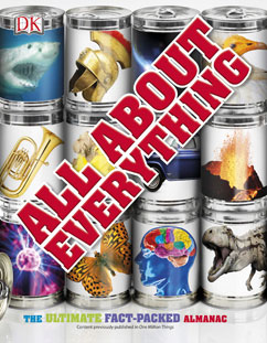 Cover for All about Everything