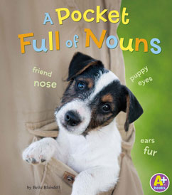 Cover for A Pocket Full of Nouns