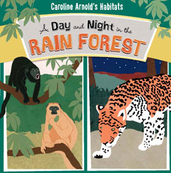 Cover for A Day and Night in the Rain Forest