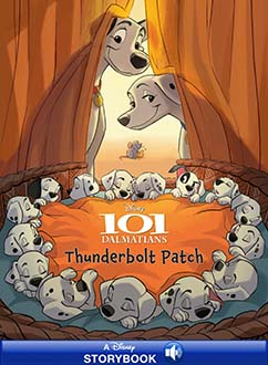 Cover for Thunderbolt Patch