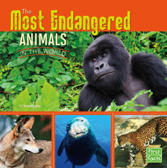 Cover for The Most Endangered Animals in the World
