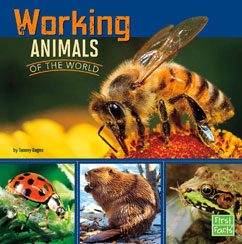 Cover for Working Animals of the World