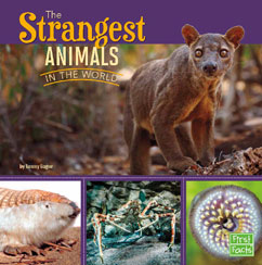 Cover for The Strangest Animals in the World