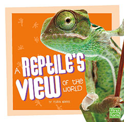 Cover for A Reptile's View of the World
