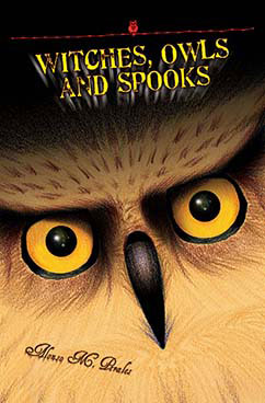 Cover for Witches, Owls and Spooks